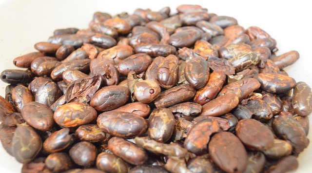 Foto Cacao Flickr Creative Commons by James Leonoe Puno